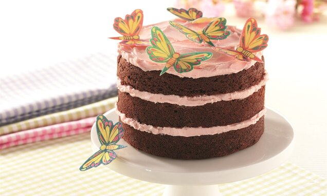 Chocolate Butterfly Layer Cake